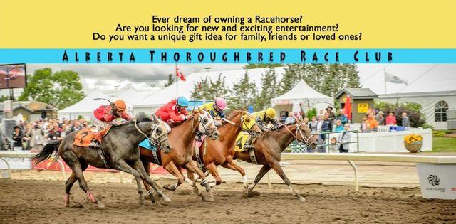 Race Club Information. Alberta Thoroughbred Race Club