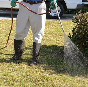 uomo che annaffia-manutenzione giardini-bari