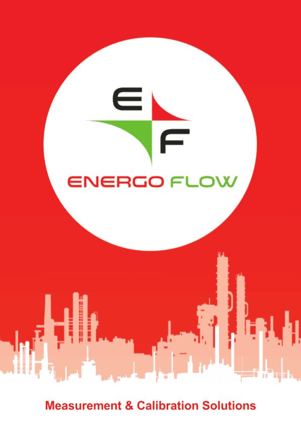 Energoflow gas meter solutions