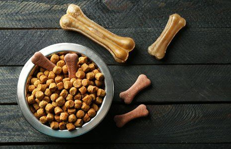 Una ciotola di cibo per cani