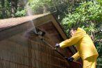 Termite Pest Control in Hilo, HI