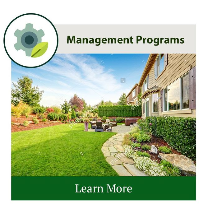 Turf Management Program
