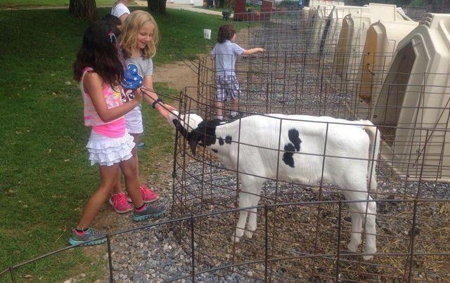 Local Dairy Farm   York, PA   Perrydell Farm Dairy