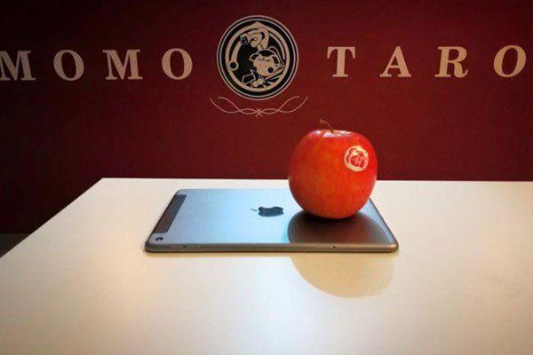 una mela appoggiata su un iPad e dietro la scritta sul muro Momo Taro