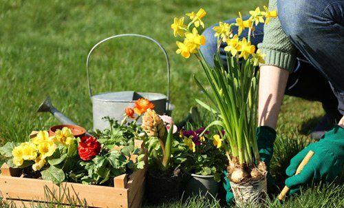 opere di giardinaggio
