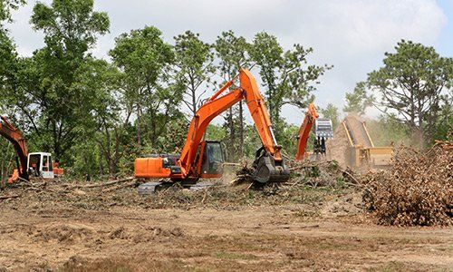 Backhoes operate clearing trees and brush from a construction site