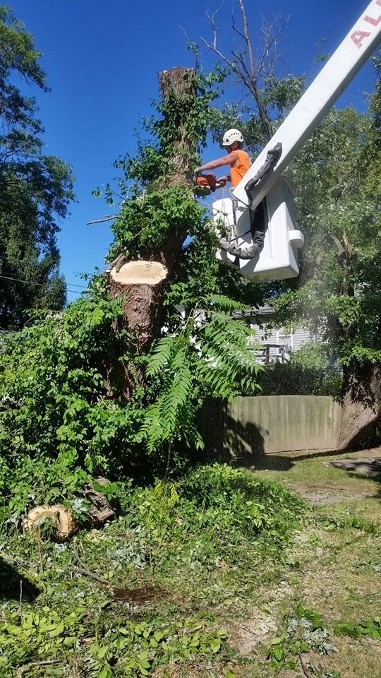 Storm damage maintenance services