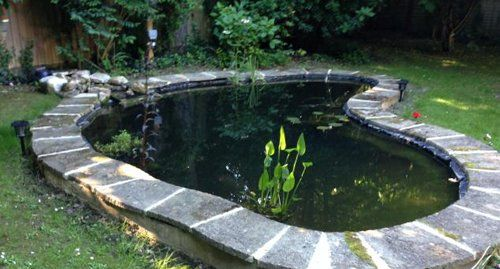 Attractive Garden Ponds From Hunnyhill Aquatics