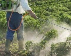 addetto con pompa a spalla durante una bonifica ambientale