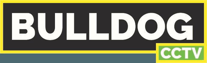 bulldog cctv logo