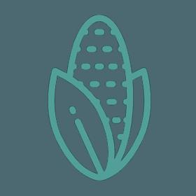 icona grano