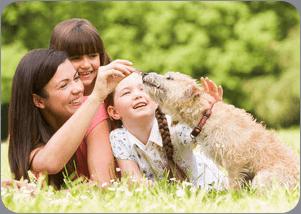 Pet Microchipping - Weybridge - Lynton House Veterinary Group - Pet Travel