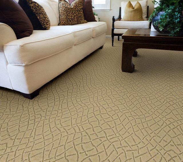 Carpet U0026 Rugs