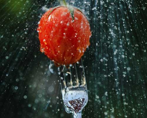 Forchetta cliccando un pomodoro sotto il rubinetto