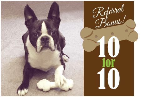 Animal Hospital of Meadville Referral Bonus