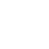 Icon of a car with round model border