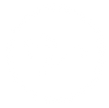 Icon of an airplane with round model border
