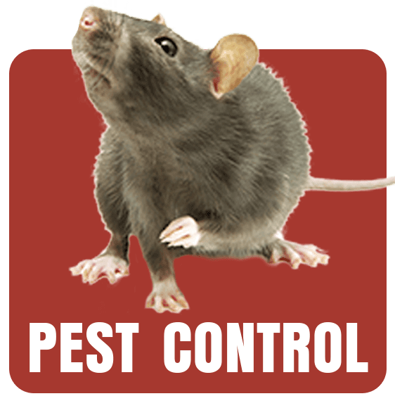 Pests, Pest Control