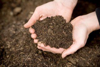 Landscaping mulch Midland, TX