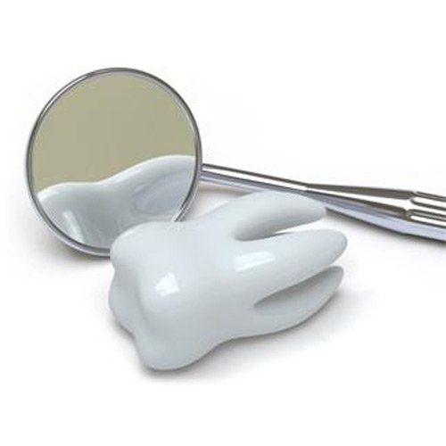 modellino di dente con specchietto del dentista
