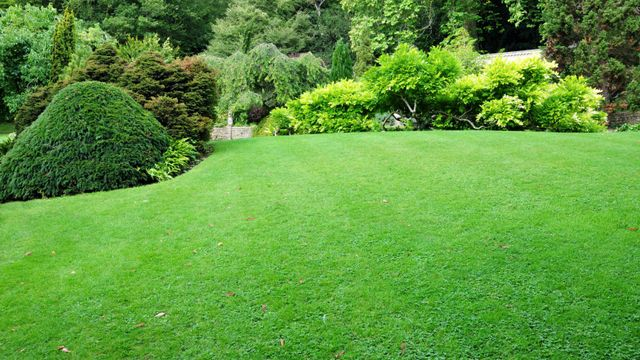 Residential lawncare project in Warwick, NY