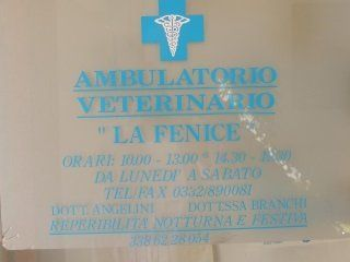 "logo dell' Ambulatorio Veterinario ""La Fenice"""