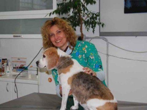 una veterinaria sorridente accanto a un cane
