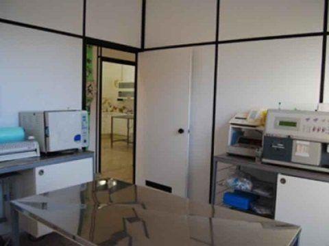 interno di una clinica veterinaria