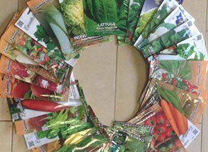 sementi in pacchetti disposte in forma circolare