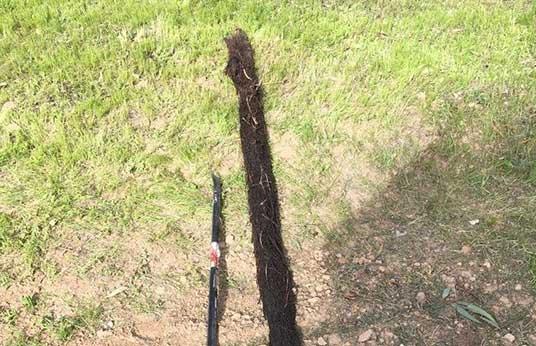 Septic North Highlands Ca Curt S Pumping Amp Septic