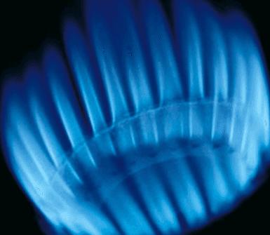 azienda distribuzione di gas metano, ditta distribuzione di gas metano, impresa distribuzione di gas metano