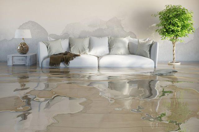 Water removal Pompano Beach FL
