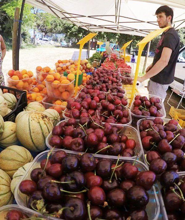 Banco di frutta dell'AZIENDA AGRICOLA DADDI NEDO