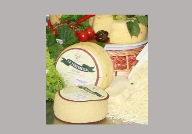 formaggio di pecora