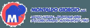 Montaldo Giorgio Srl