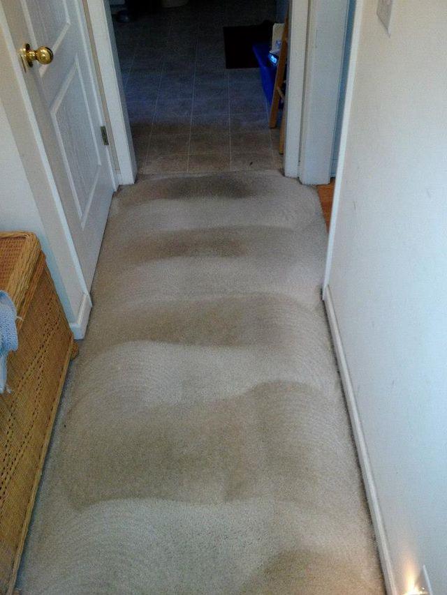Carpet Cleaning Murfreesboro Tn Swan Floor Care