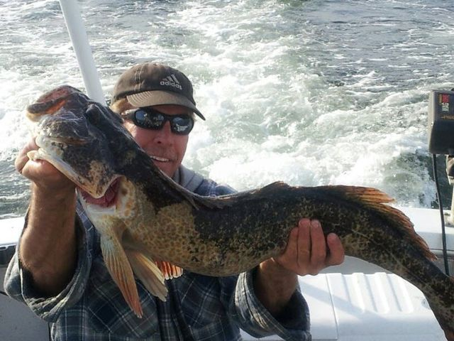 Charter salmon halibut lingcod fishing in seattle and for Halibut fishing charters washington