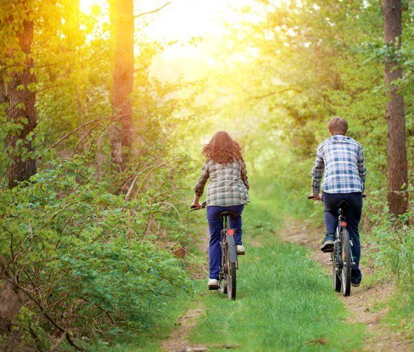 Two people cycling through the woods
