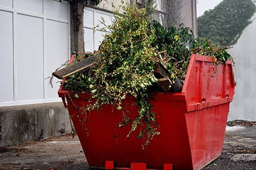 Affordable garbage skips offered for hire by Hillfoot Waste Management Ltd