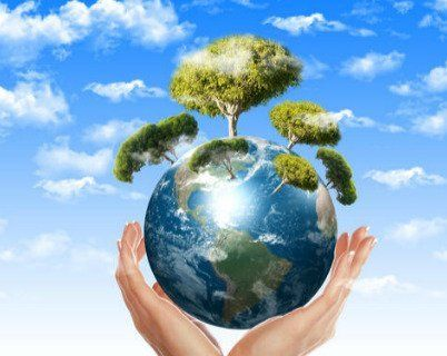 due mani che mantengono un modo con degli alberi