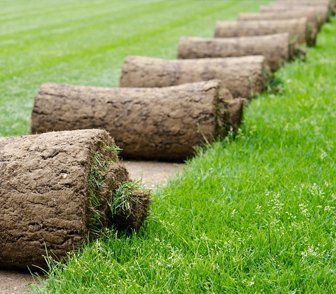 Rolls of turf ready to laid