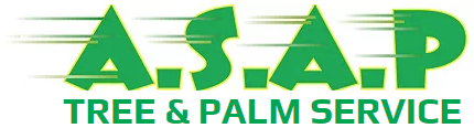 asap tree and palm service