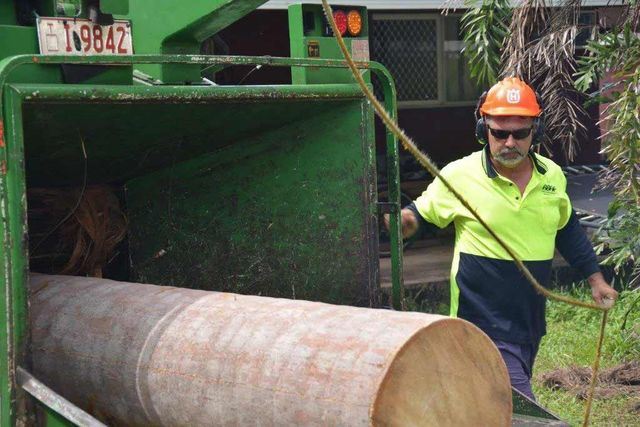 different worker watching stump being grinded