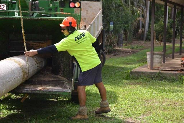 A worker guiding stump through grinder as part of our stump removal in Darwin