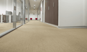 Carpet and vinyl supplied