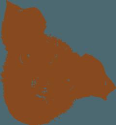 Ristorante con accesso libero cani a Cortona