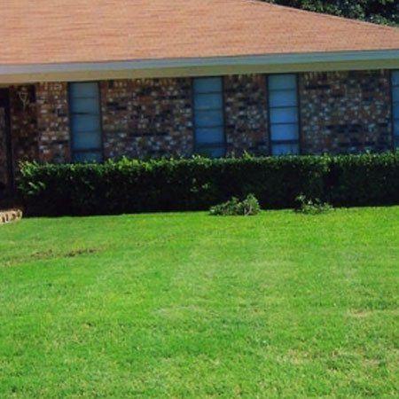 lawn aerating San Angelo, TX