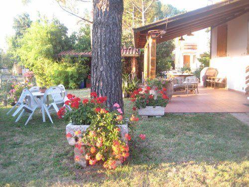 veranda e giardino con un alto albero