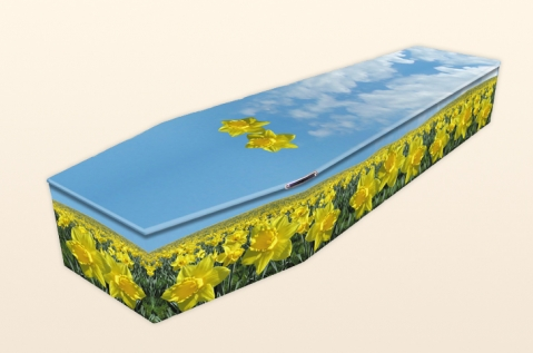 Painted coffin