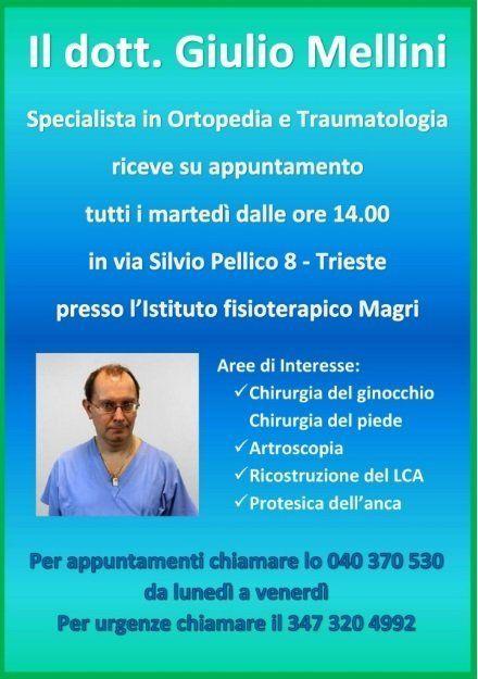 Dott. Giulio Mellini Specialista
